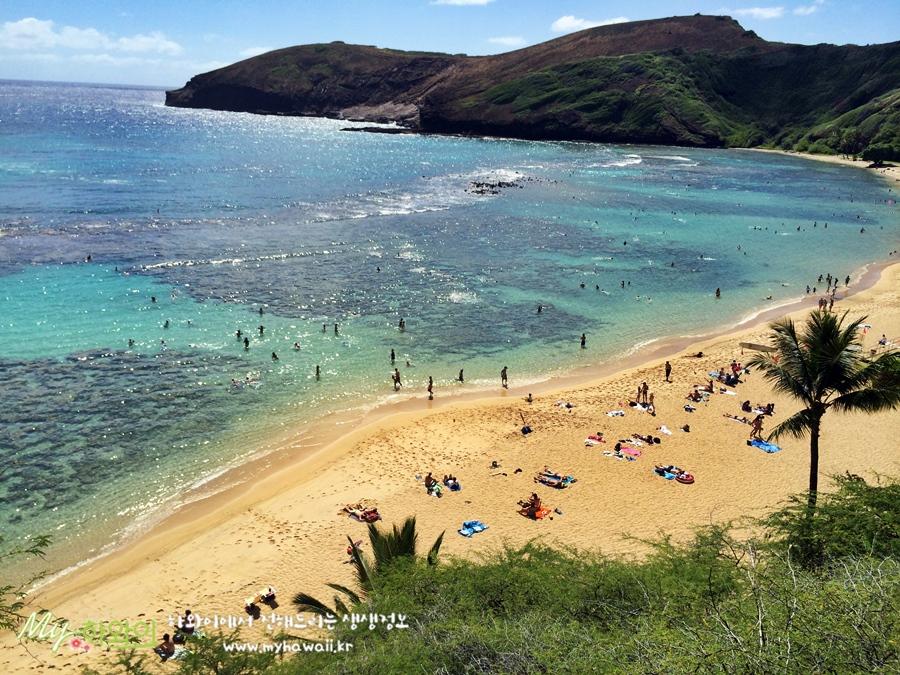 하와이 명소 여행 하나우마 베이 Hanauma Bay (7)