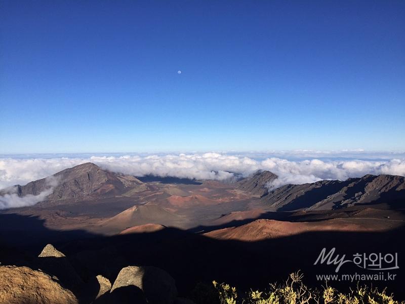 하와이 마우이 자유여행 할레아칼라 (9)