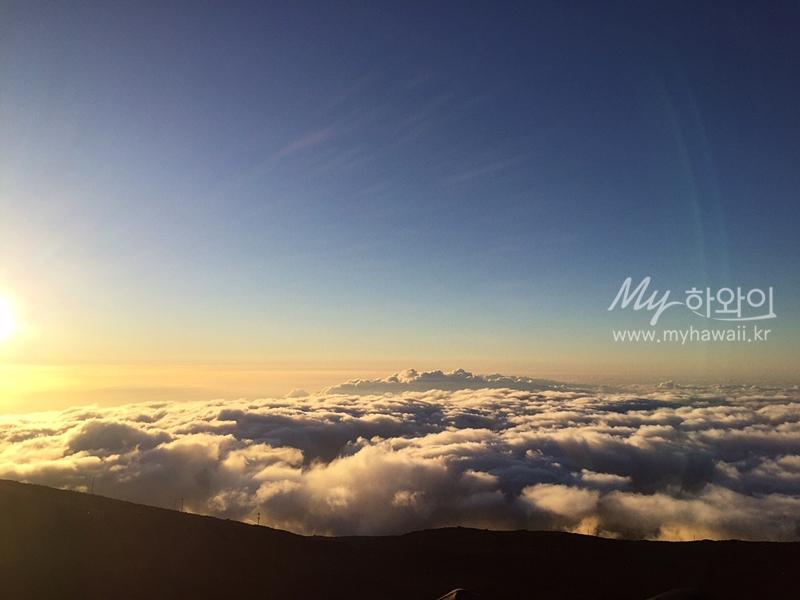 하와이 마우이 자유여행 할레아칼라 (15)