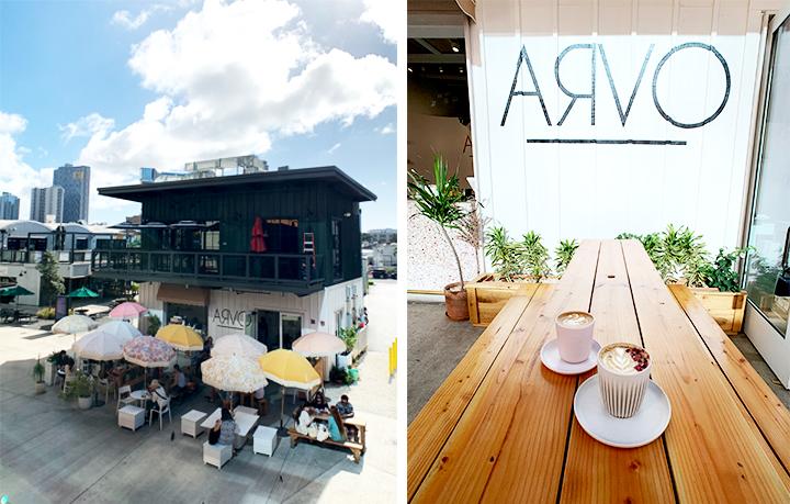 하와이 아르보 카페